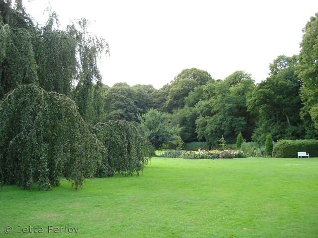 Parken ved Højriis Slot