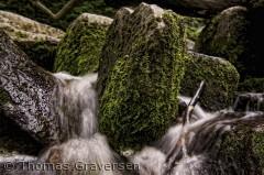 Billedet er taget ved en af de mange Bornholmske åer.  Fotograf: Thomas Graversen  tgraversen36@gmail.com