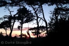 Et af utallige fortryllende fotos fra solnedgangene over Høve Strand.