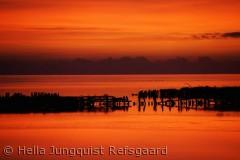 Sikke en solnedgang jeg oplevede ved Mandø. Danmark er fantastisk i alt sin fylde.