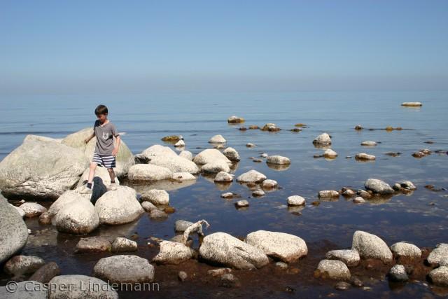 I strandkanten for foden af Møns Klint er der mange store sten, som det er sjove at lege på.