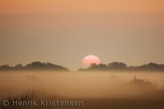 Morgendis og solopgang over Mandø.