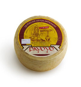 Aged Payoyo  sheep cheese