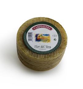 Flor del Tera cheese