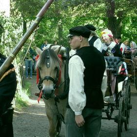 Bondbröllop. Brudpar i häst och vagn