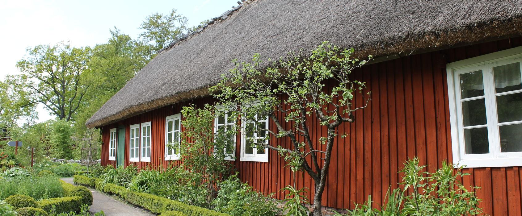 Skånegårdens have