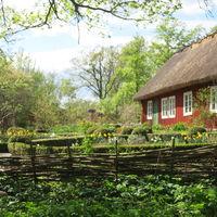 Låg flätgärdesgård i Skånegårdens trädgård