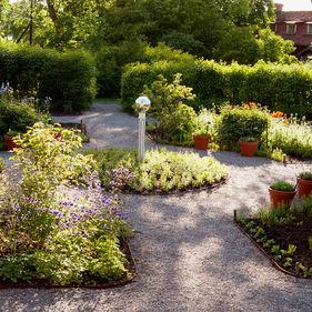 Örtagården på Skansen