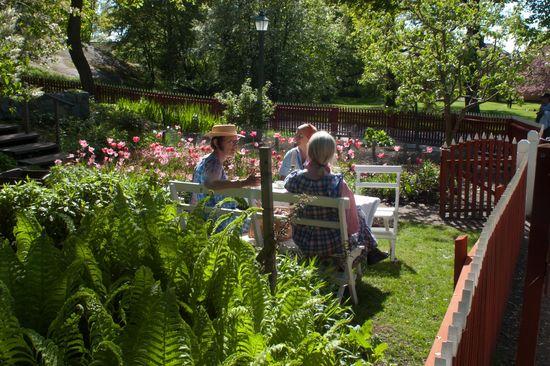Sommar i koloniträdgården
