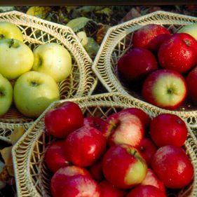 Äpplen på Skansen