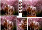 .horses   plc
