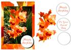 Gorgeous Gladioli + decoupage