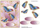 Gilded Frame & Shimmering Butterflies