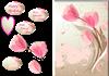 tulip cardd