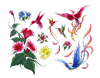 Flowers and birds.1