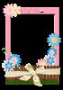floral frame   png