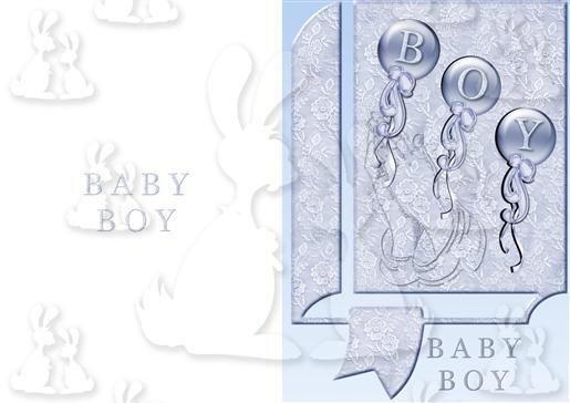 baby boy  plc