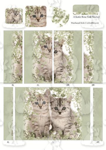 Holly KittenLargeSide