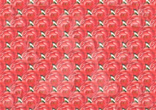 vintage rosepaperred dwj