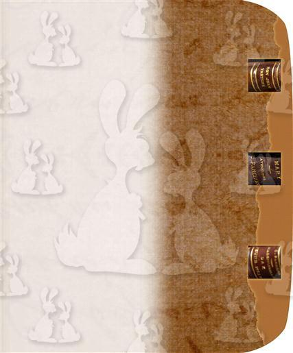 Brown Book A5 Envelope  Liner