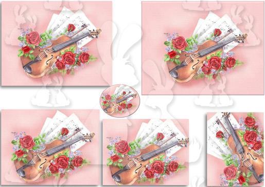 .violin mcs