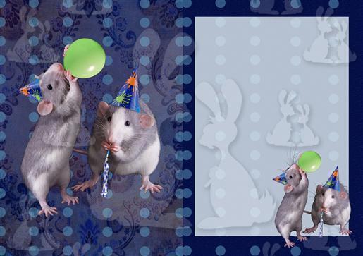 Blue Party Rats A5 Insert