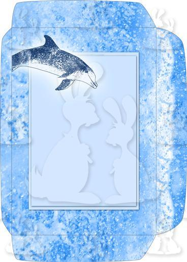 Blue Dolphin A5 Envelope Front