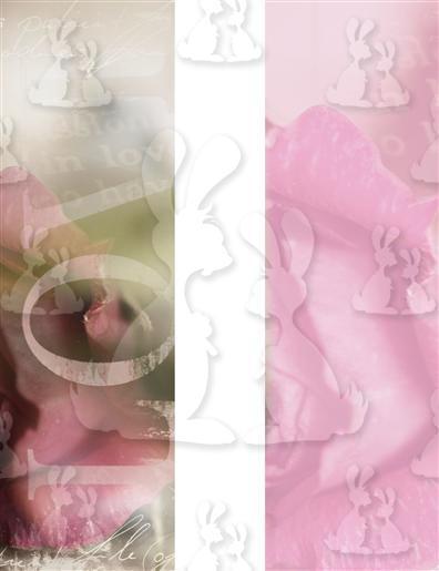 Pink Rose Base A5