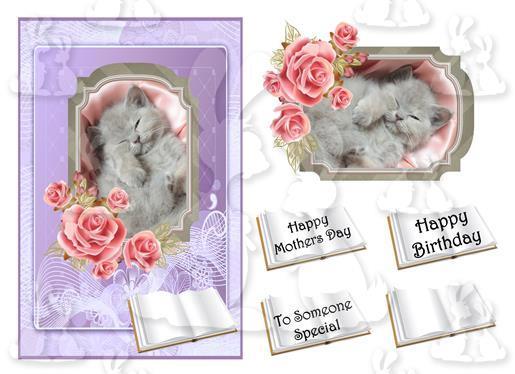 someone special (card No 11V)