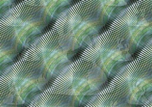 Crazy wave-DWJ