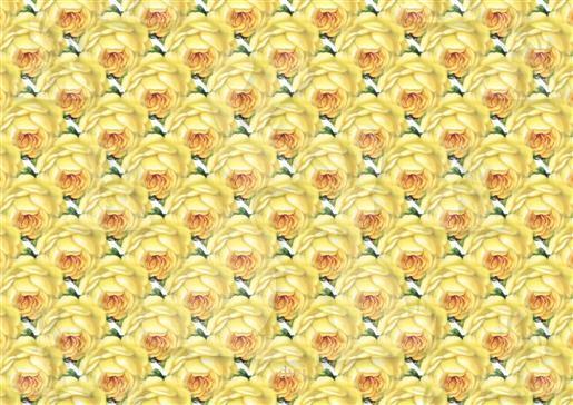 vintage rosepaper dwj