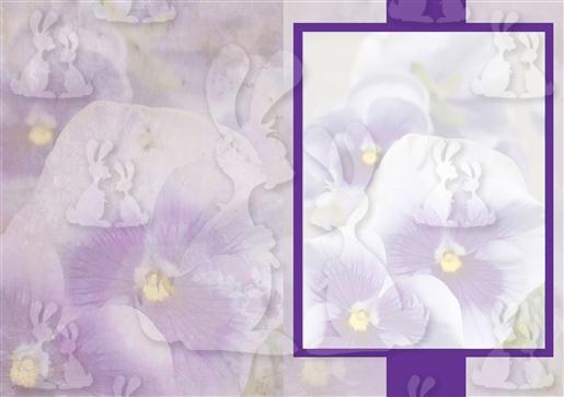 Purple Pansies A5 Insert