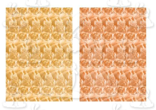 Roses Background Papers