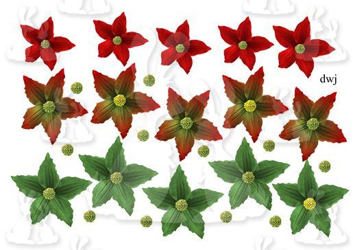 build_your_own_pointsettia_dwj