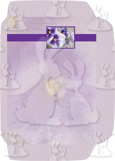 Purple Pansies A5 Envelope Front
