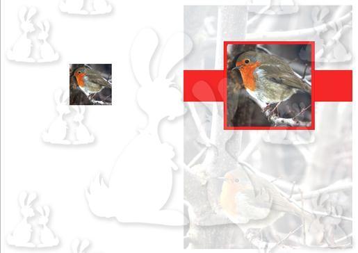 Christmas Robin A5 Card