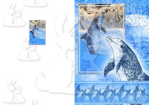 Blue Dolphin A5 Card