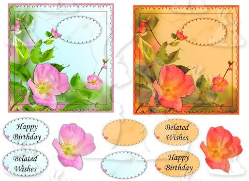 2 square card (Floral No 4a)