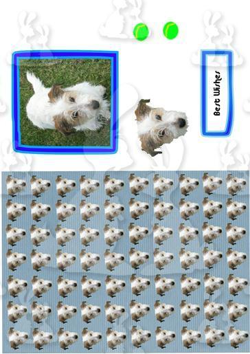 Design sheet dog