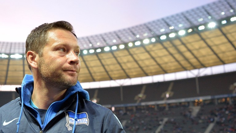 Herthas Trainer Pal Dardai. (Foto: picture alliance / dpa)