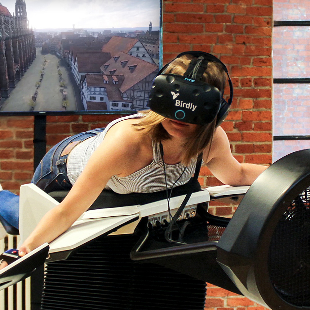 Flightsimulation 1890 Virtual Reality Ulm Experience