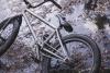 Dig Bmx Sergio Bike Aw 11