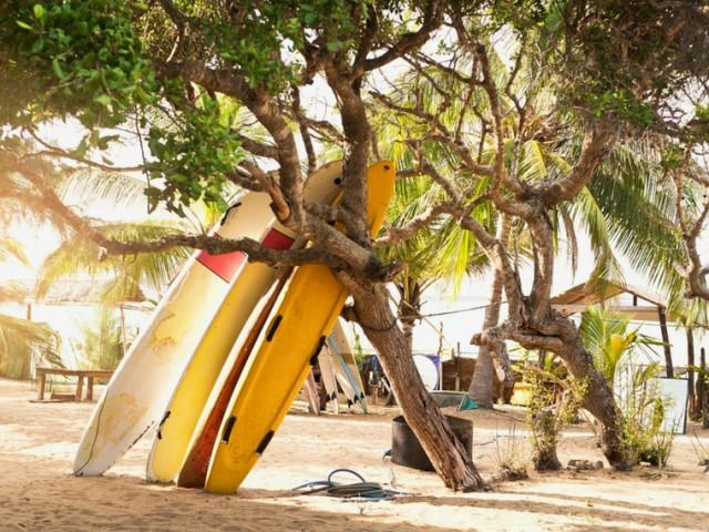 Rilassarsi a Arugam Bay, nel paradiso dei surfisti