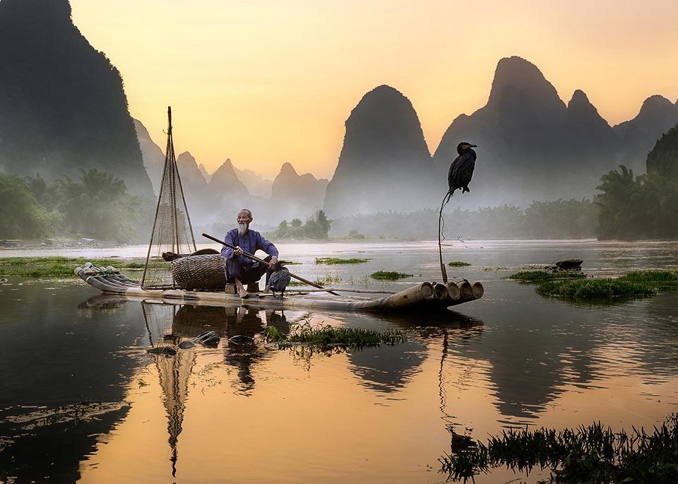L'antica pratica della pesca con il cormorano, ancora utilizzata in alcune parti della Cina: gli uccelli catturano quei pesci troppo grandi per poterli mangiare © Pacmanfrog Photo / Moment RF / Getty Images