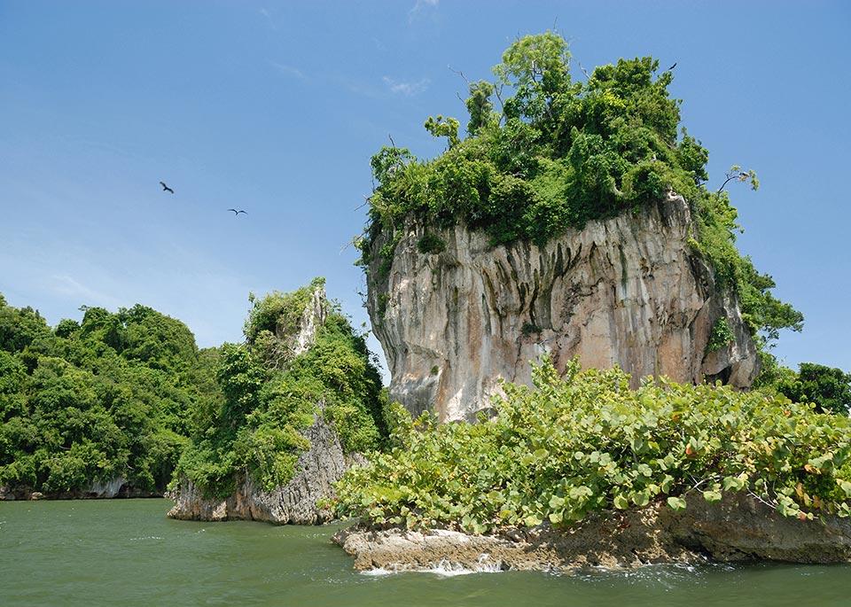 Los Haitises, gioiello lussureggiante nel nord della Repubblica Dominicana, è diventato un parco nazionale nel 1976 ©Gueholl / E+ / Getty Images