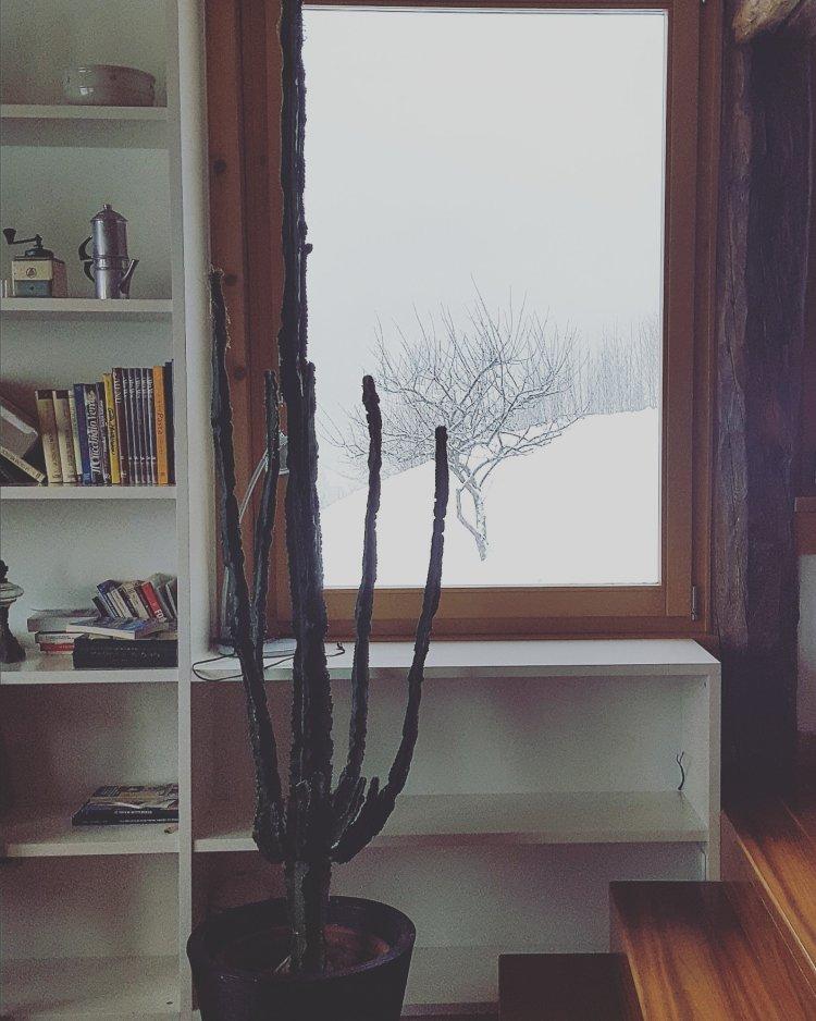 Guardando la neve cadere in Val di Pejo