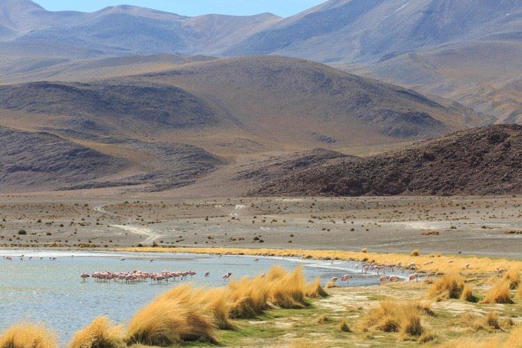 Lagune Boliviane