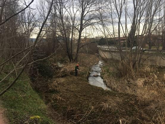 Neteja de la llera del riu Méder al seu pas per Vic