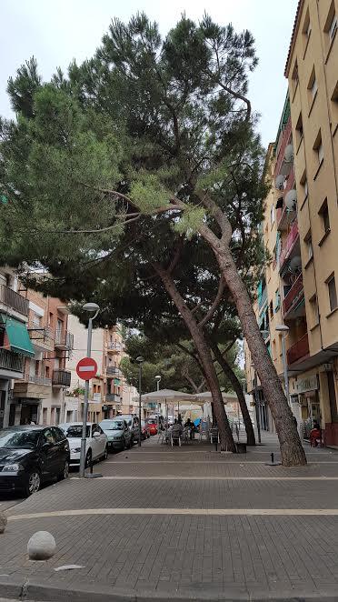 Ajuntament de Canovelles