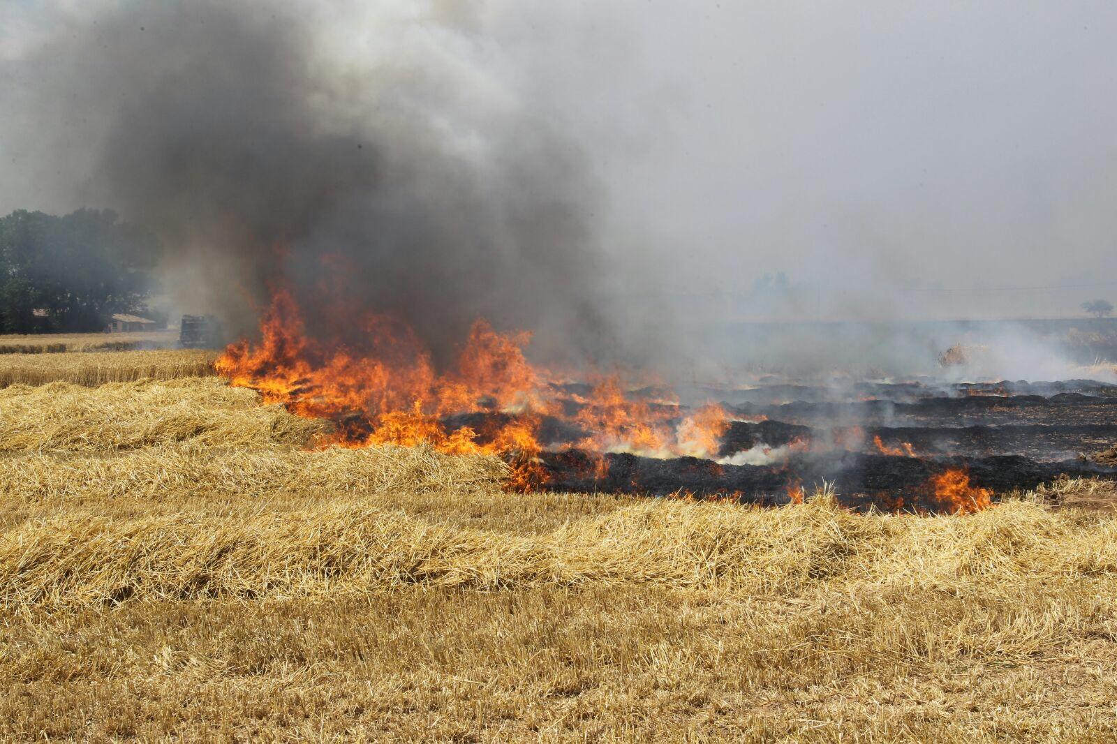 Imatge d'arxiu d'un incendi en un camp de conreu